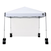 E-Z UP Regency 10'x10' Straight-Leg Canopy with Wall and Weight Bags