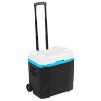 Igloo Profile 30-Quart Rolling Cooler