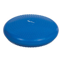 Go Time Gear Disk Balance Trainer