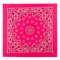 Carolina Creative Traditional Paisley Bandana